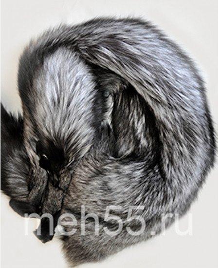 Лиса  чернобурка